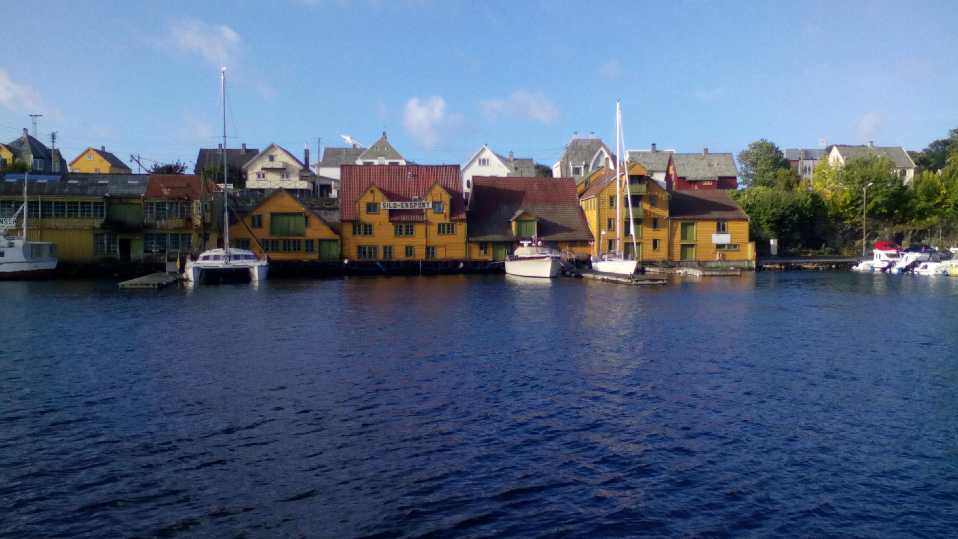 export norvege